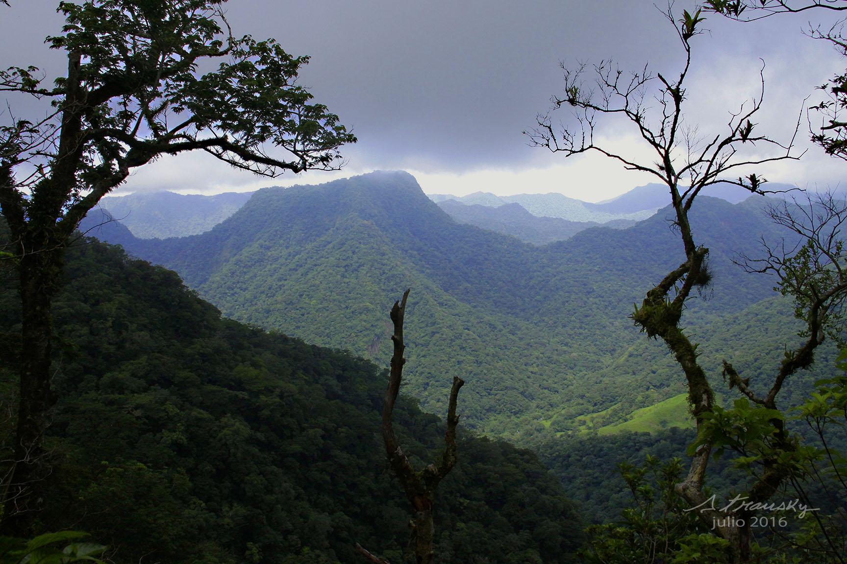 Vista A La Reserva De La Biosfera Desde El Cerro Del Marinero