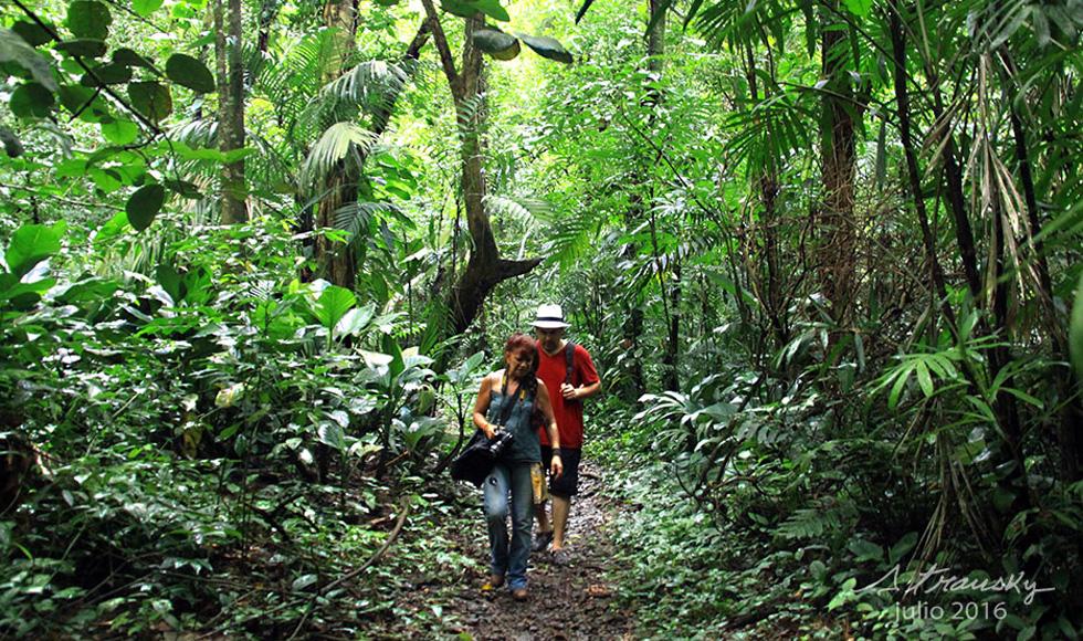 Caminantes En Sendero De La Cascada Del Marinero